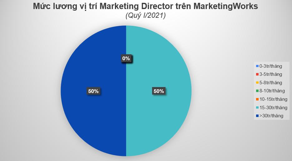 muc-luong-vi-tri-marketing-director